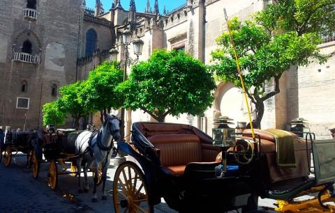 Las 3 excursiones básicas por Sevilla